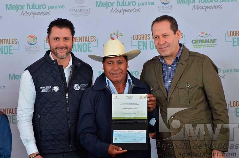 Ni talar ni trasplantar árboles del Paseo Tollocan, advierte Eruviel Ávila