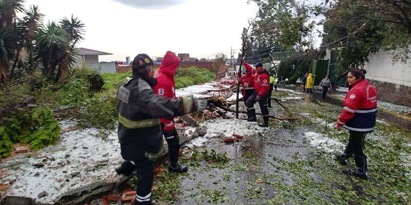 179 árboles caídos, techumbres y bardas, saldo de la fuerte lluvia de este jueves en Toluca