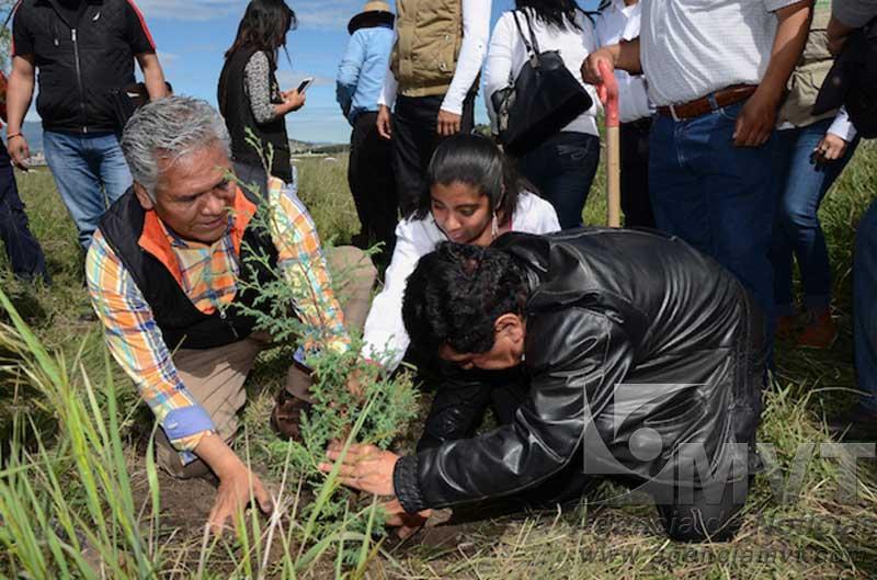 Crearán cinturón verde en Toluca
