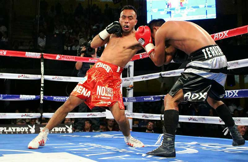 Triunfa boxeador universitario en pelea profesional