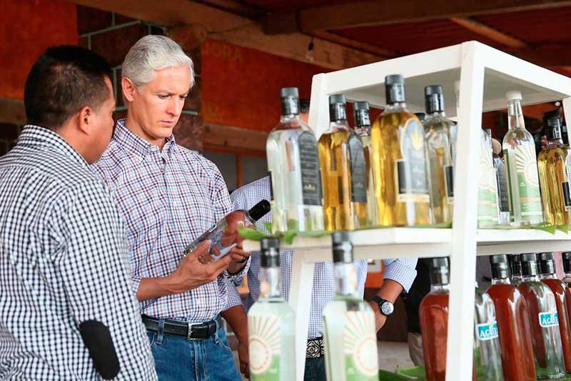 El Consejo Regulador del Mezcal no ve con buenos ojos denominación de origen mexiquense