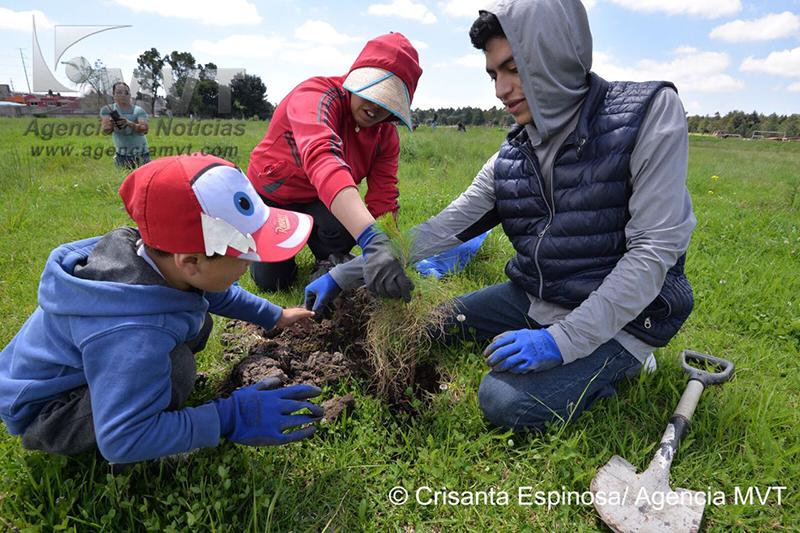 Plantan 3 mil árboles en el Parque Alameda 2000