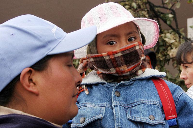 Hasta 15 por ciento de la población padece rinitis alérgica: IMSS