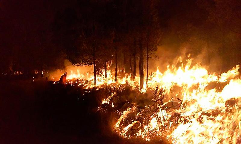 Reportan en Edoméx mil 380 incendios forestales en lo que va del año