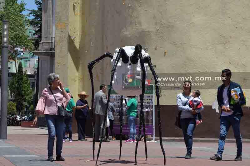 Asombran arañas gigantes en el Centro Histórico