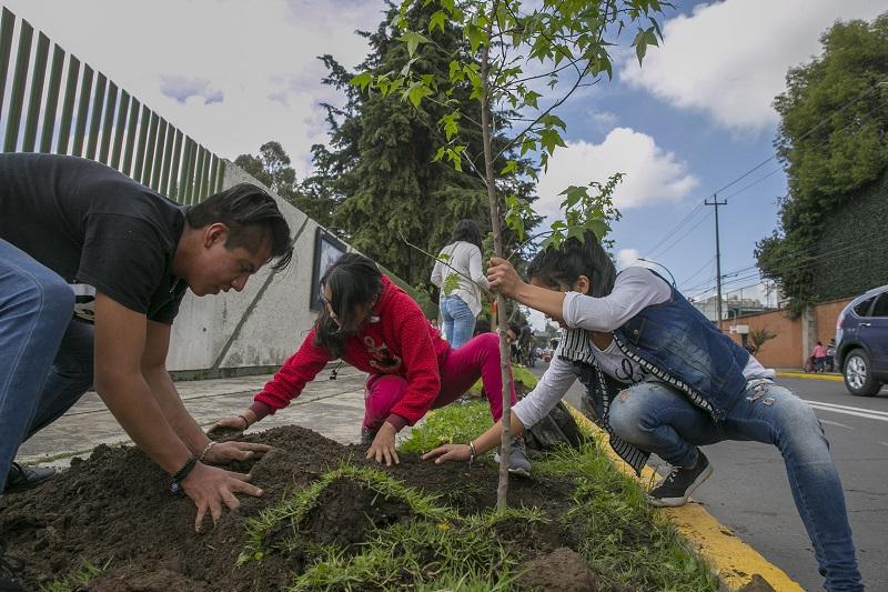 Estudiantes de UAEM realizaron arborización urbana en Toluca