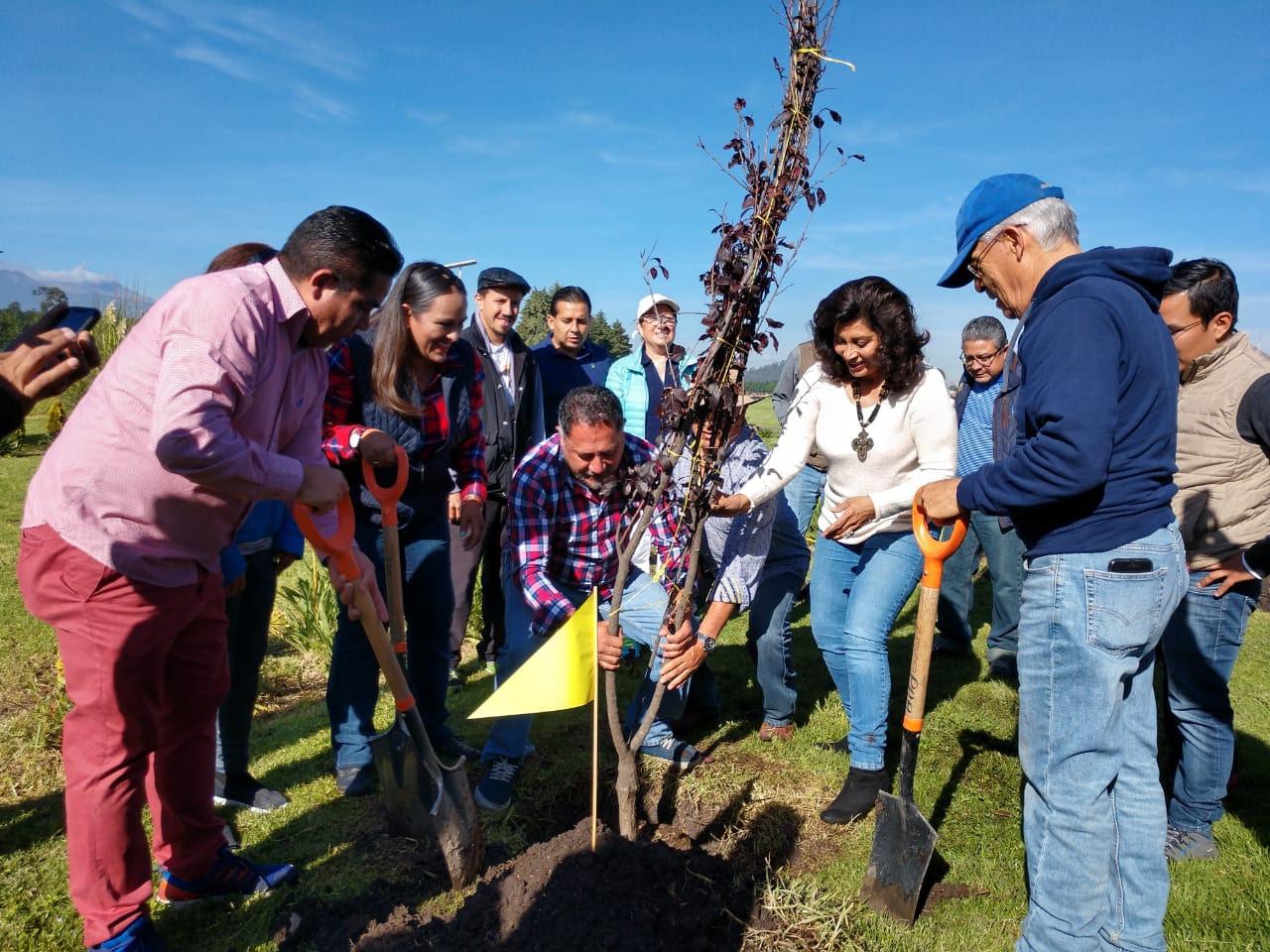 Más de 3 mil árboles plantados en Metepec
