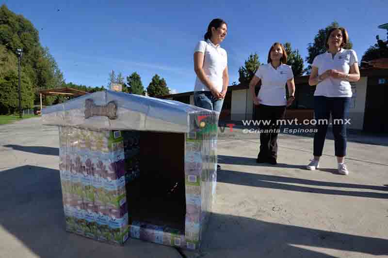 Convierten tetrapack en casas para mascotas