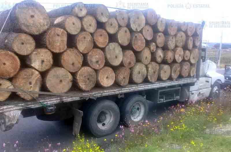 Incautan camión cargado de madera sin permiso