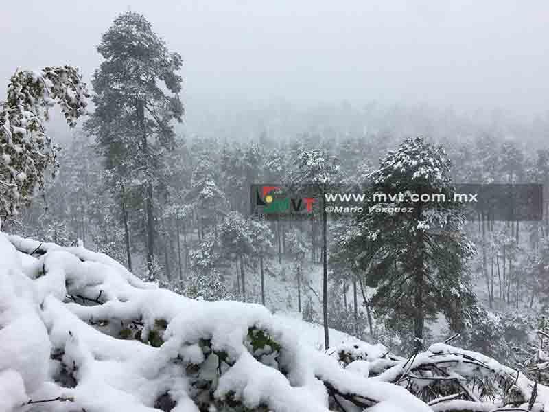 ¿Piensas subir al Nevado de Toluca?