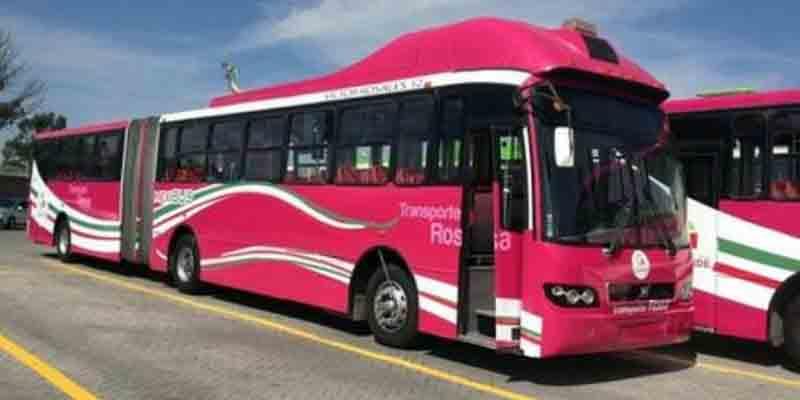 Transporte Rosa da servicio a 400 mil mujeres mexiquenses