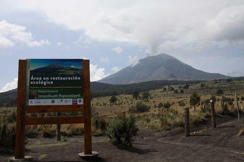 En marcha operativo de confinamiento para transporte público en el primer cuadro de Toluca