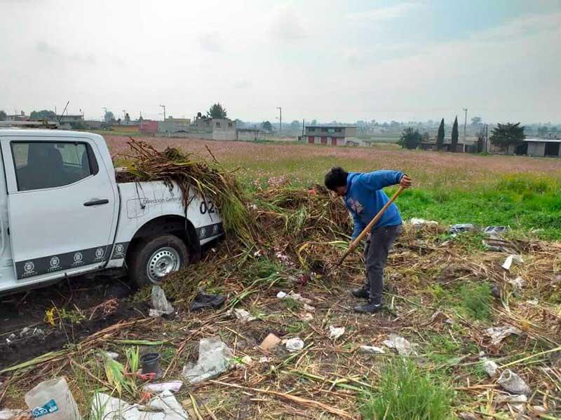 Eliminan focos de infección en alrededores de panteones en Toluca