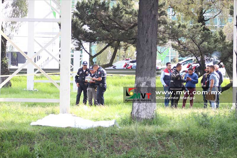 Jardineros encuentra cadaver de un hombre en Tollocan frente a Galerías