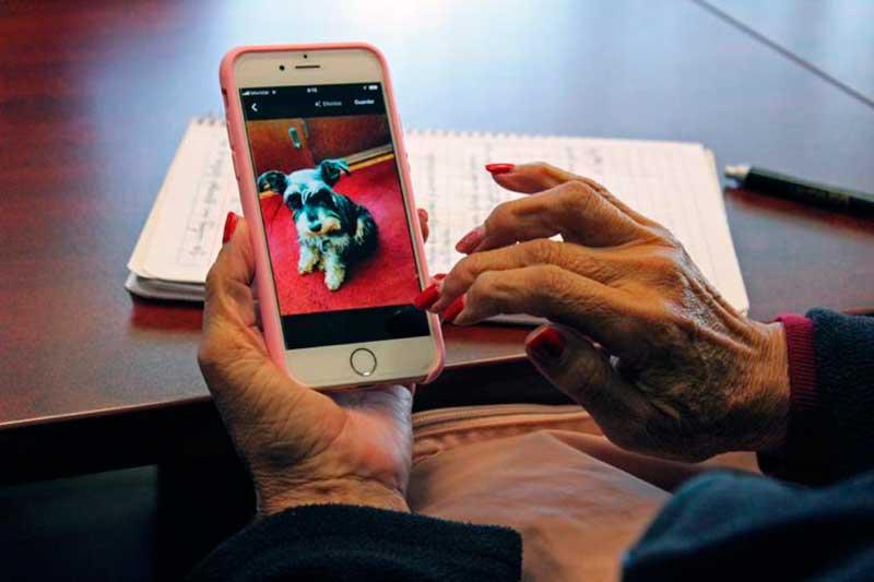 Capacitan a adultos mayores en el manejo de celular y redes sociales
