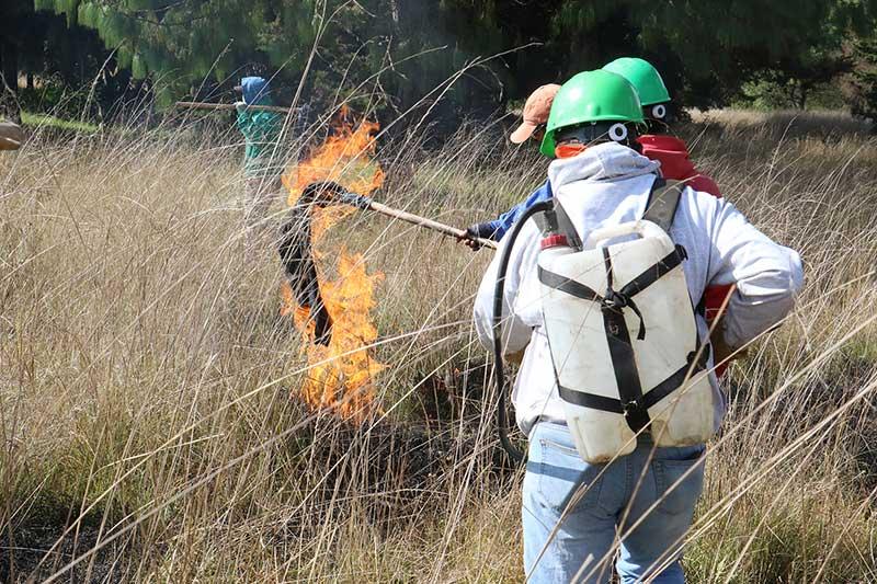 Brigada forestal de Toluca previene y combate incendios