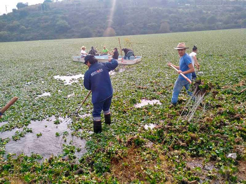 CAEM participa en la limpieza de la presa Madín