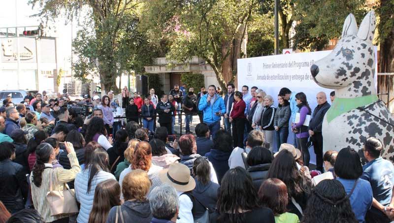 Construirán en Toluca un hospital para atender a perros y gatos callejeros