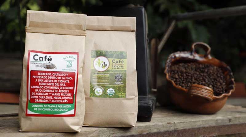 Celebrarán día del café con una expo en Metepec