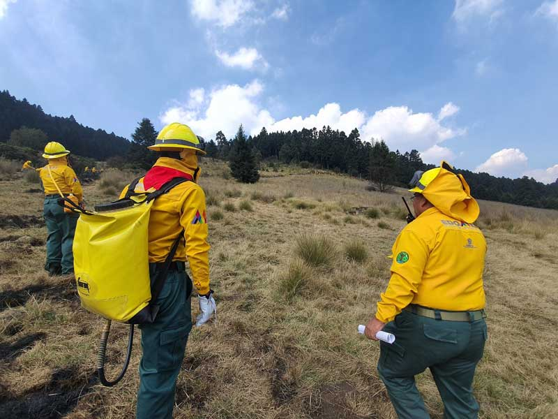 Probosque inicia trabajos preventivos contra incendios forestales