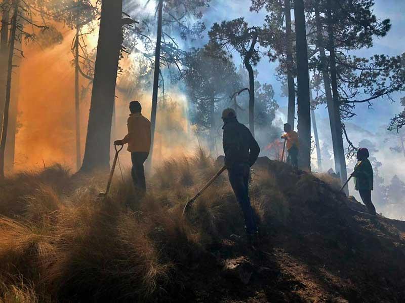 Más de 100 brigadistas trabajan en el incendio forestal del Nevado de Toluca