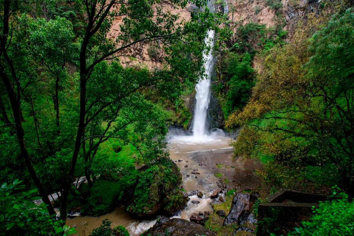 Retoman parques, áreas naturales protegidas y zoológicos actividades al 70 por ciento de aforo