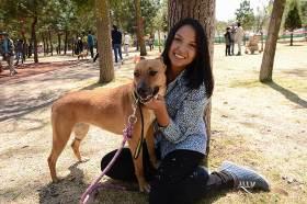 Ley de maltrato animal