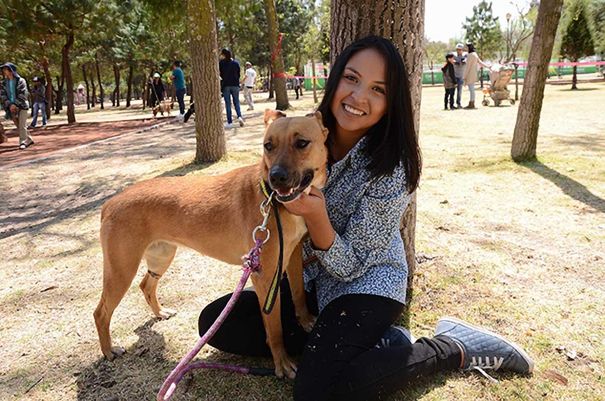 Diputados endurecen penas por maltrato animal en Edomex