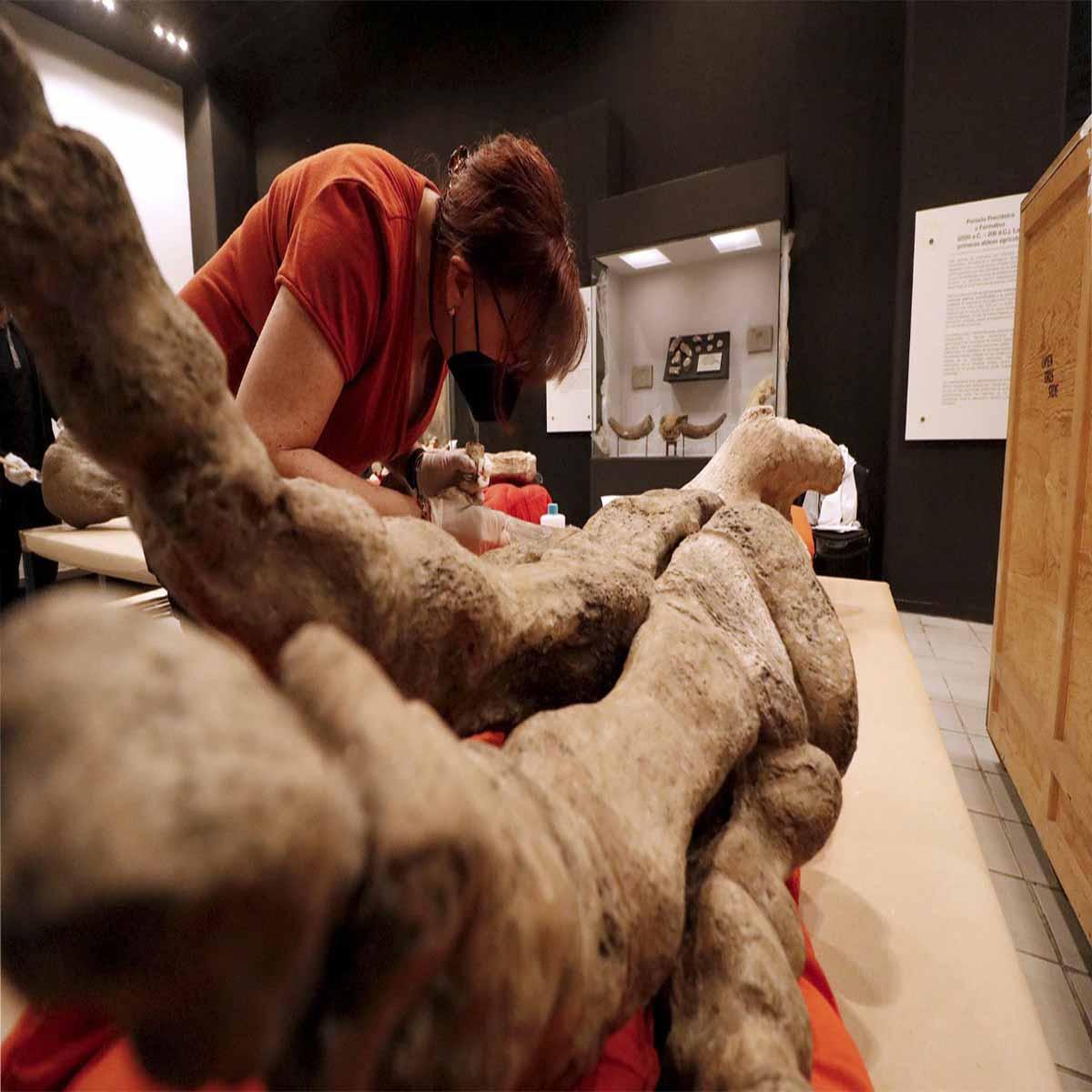 Visita la exposición del Mamut en Toluca